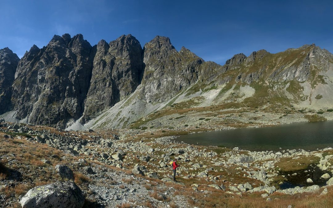 The first environmental DNA sampling in the Tatra alpine lakes